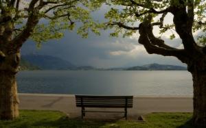 the_calm_lake_2560x1600