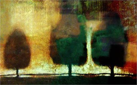 Matt Gruber Trees